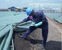 Biomasse-Briketts für Kenia