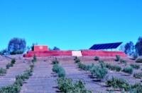 Solare Tröpfchenbewässerung Marokko - zweite Tranche